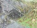 Rydal Cave (28th April 2019) 002.jpg