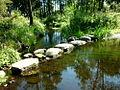Rzeka Pokrzywnica.JPG