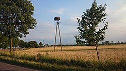 Sławęcin w gminie Bieżuń - bocianie gniazdo.jpg