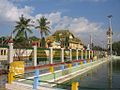 Sacred fish pond @ Maha Muni.jpg