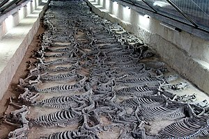 Zibo - Sacrificial horses in the tomb of Duke Jing of Qi, discovered in Linzi