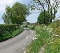 Sandtop Lane in Blackfordby, Leicestershire - geograph.org.uk - 816660.jpg