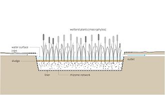 Constructed wetland - Schematic of a free-water surface constructed wetland: It aims to replicate the naturally occurring processes, where particles settle, pathogens are destroyed, and organisms and plants utilize the nutrients.