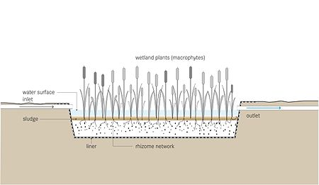 Schematic of the Free Water Surface Constructed Wetland.jpg