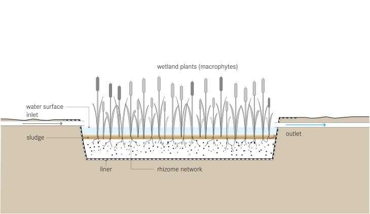 Schematic of the Free Water Surface Constructed Wetland