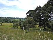 Schlachtfeld Schlacht bei Hastings juni09
