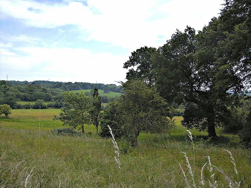 File:Schlachtfeld Schlacht bei Hastings juni09.JPG