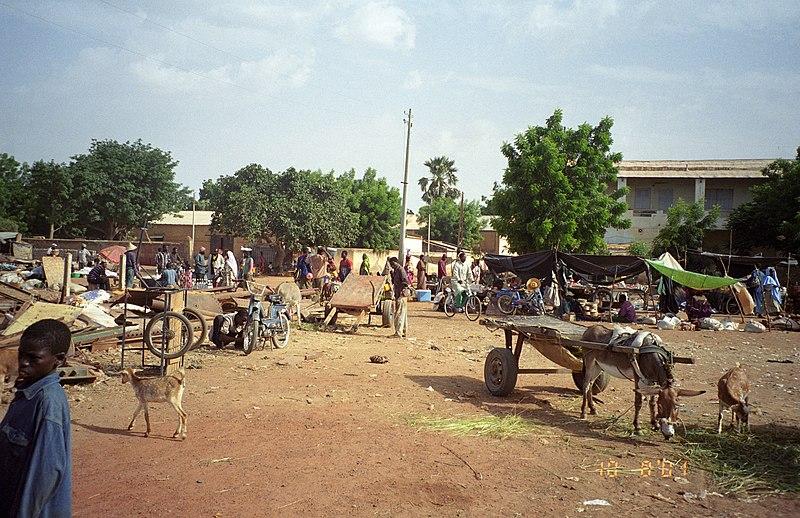 elfenbeinhandel in mali