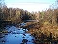 Seinäjoki river.jpg