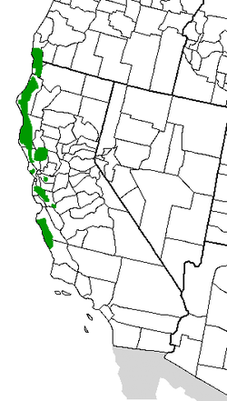 Sequoia sempervirens Distribution.png