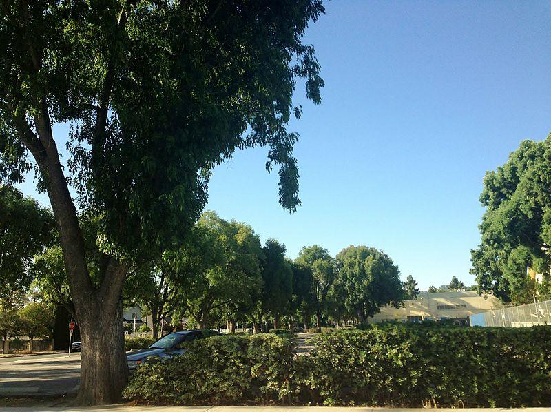 File:Sherman Oaks, Los Angeles, CA, USA - panoramio (202).jpg