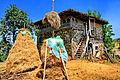 Shtëpi karakteristike Fshati Kosturr - Has.jpg