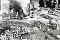 Sikh pogrom of 1984.jpg