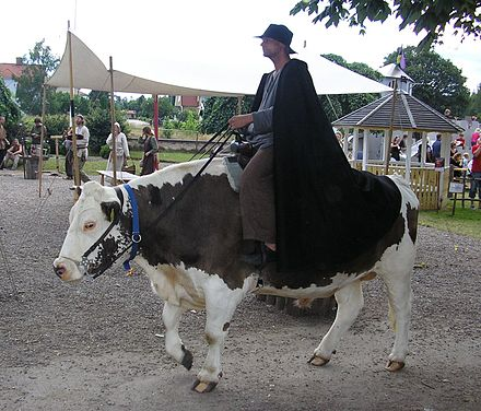 Riding an ox in Hova, Sweden Sixten.jpg