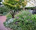 Smithsonian Gardens in October (22721471206).jpg