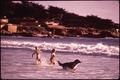 Southern California - Big Sur Coastal Area - NARA - 543396.tif