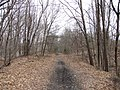 Southern New England Trunkline Trail at Central St, Millville MA.jpg
