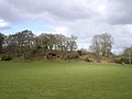 Southern ramparts of Buckland Rings iron-age camp viewed from the south - geograph.org.uk - 24952.jpg