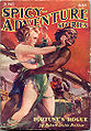 Spicy-Adventure Stories June 1935.jpg
