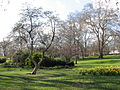 Spring in St. James Park - London (2328992489).jpg