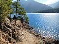 Spruce Trail is popular (29465642370).jpg