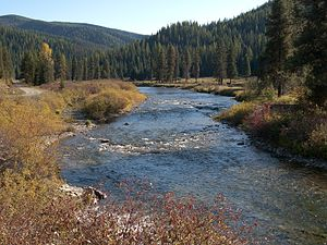 Saint Joe River - Saint Joe River in the St. Joe National Forest
