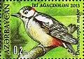Stamp of Azerbaijan - 2013 - Colnect 706320 - Dendrocopos major.jpeg