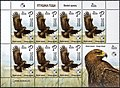 Stamp of Belarus - 2019 - Colnect 875672 - Greater Spotted Eagle Clanga clanga.jpeg