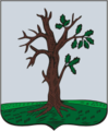 Starodub COA (Chernigov Governorate) (1782).png