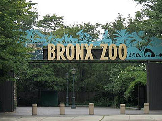 Animal theme park - Bronx Zoo, New York City, United States
