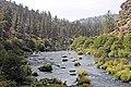 Steelhead Falls (15363354042).jpg