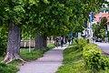 Steinlach in Tübingen entlang der Fürststraße Blickrichtung Norden.jpg