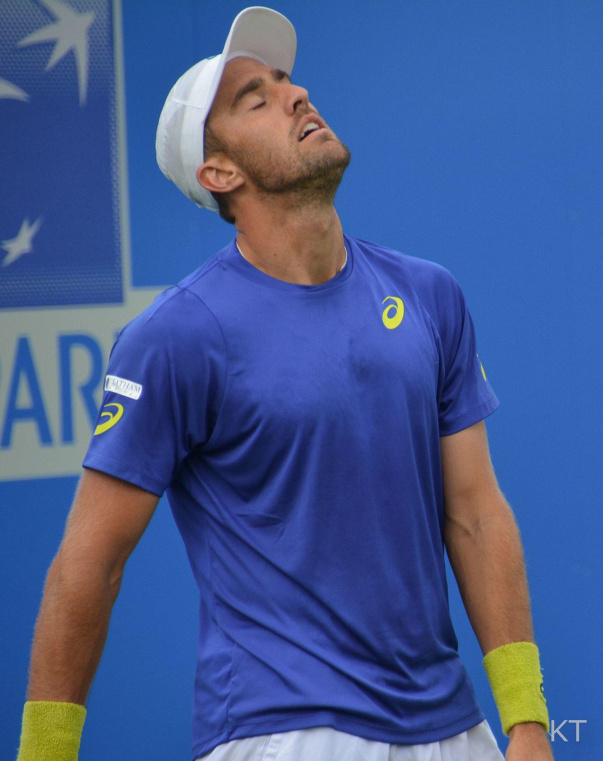 Steve Johnson teniszező – Wikipédia