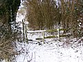 Stile, Bishopstone Hollow - geograph.org.uk - 1653666.jpg