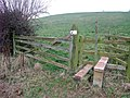 Stile on Trent Valley Way up Micklebarrow Hill - geograph.org.uk - 1101502.jpg