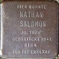 Stumbling block for Nathan Salomon (Im Dau 12)