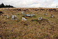 Stone circle and cist on Lakehead Hill.jpg