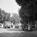 Straatbeeld in Petah Tikwa Een lommerrijke weg met auto's, voetgangers en winke, Bestanddeelnr 255-3781.jpg