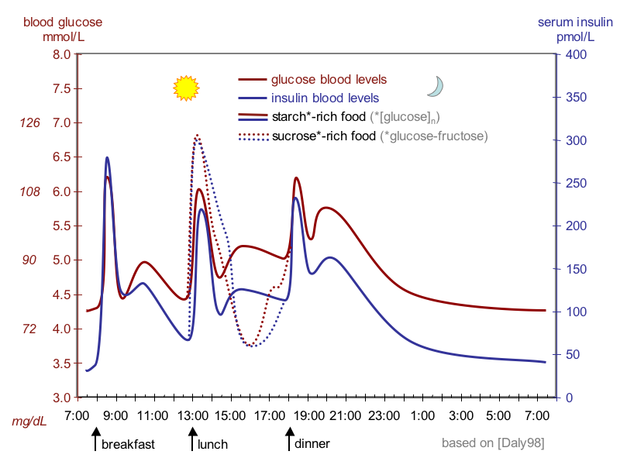The fluctuation of blood sugar (red) and the sugar-lowering hormone insulin (blue) in humans during the course of a day with three meals. One of the effects of a sugar-rich vs a starch-rich meal is highlighted. Suckale08 fig3 glucose insulin day.png