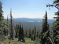 Summit Lake from Diamond Peak Wilderness.JPG