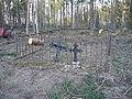 Taari talu kalmistu 01.JPG