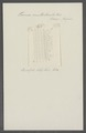 Taenia multistriata - - Print - Iconographia Zoologica - Special Collections University of Amsterdam - UBAINV0274 105 19 0003.tif