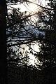 Tahoe Lake - panoramio (31).jpg