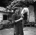 Tako so ženske pred leti predle v Brkinih- Kodela na preslci, prejo so ovijali na vretence, Padež (Ostrovica), pri Šproharjevih.jpg