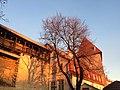 Tallinn - -i---i- (31652226333).jpg