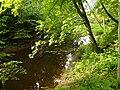 Tarvastu jõgi.JPG