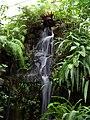Teplice, skleník Tropicana, tropický skleník, vodopád.jpg