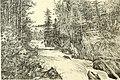 The American angler (1895) (14591817928).jpg