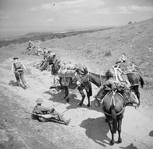 31st Brigade (United Kingdom) - Mule teams from the 31st Independent Infantry Brigade training in the Black Mountains in Wales, 26 June 1941.
