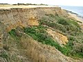 The Naze, Cliff erosion (2) - geograph.org.uk - 1479325.jpg